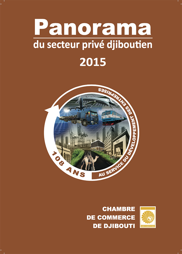 PANORAMA DU SECTEUR PRIVE 2015