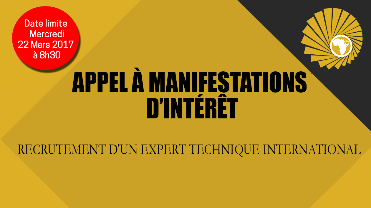 Recrutement d'un expert technique international